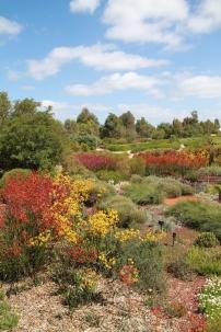 Botanic Gardens Cranbourne