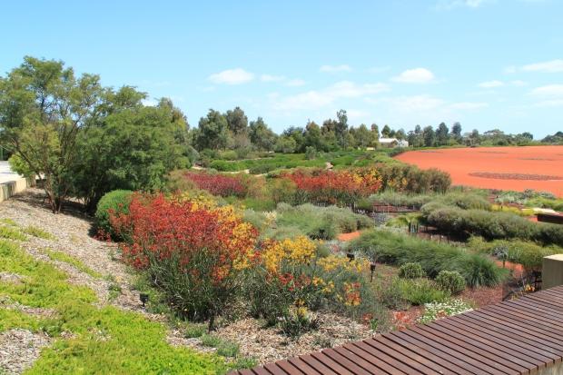 Botanic Garden - Cranbourne