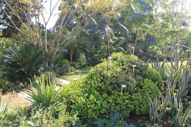 Myles Baldwin 'Sydney Gardenesque'
