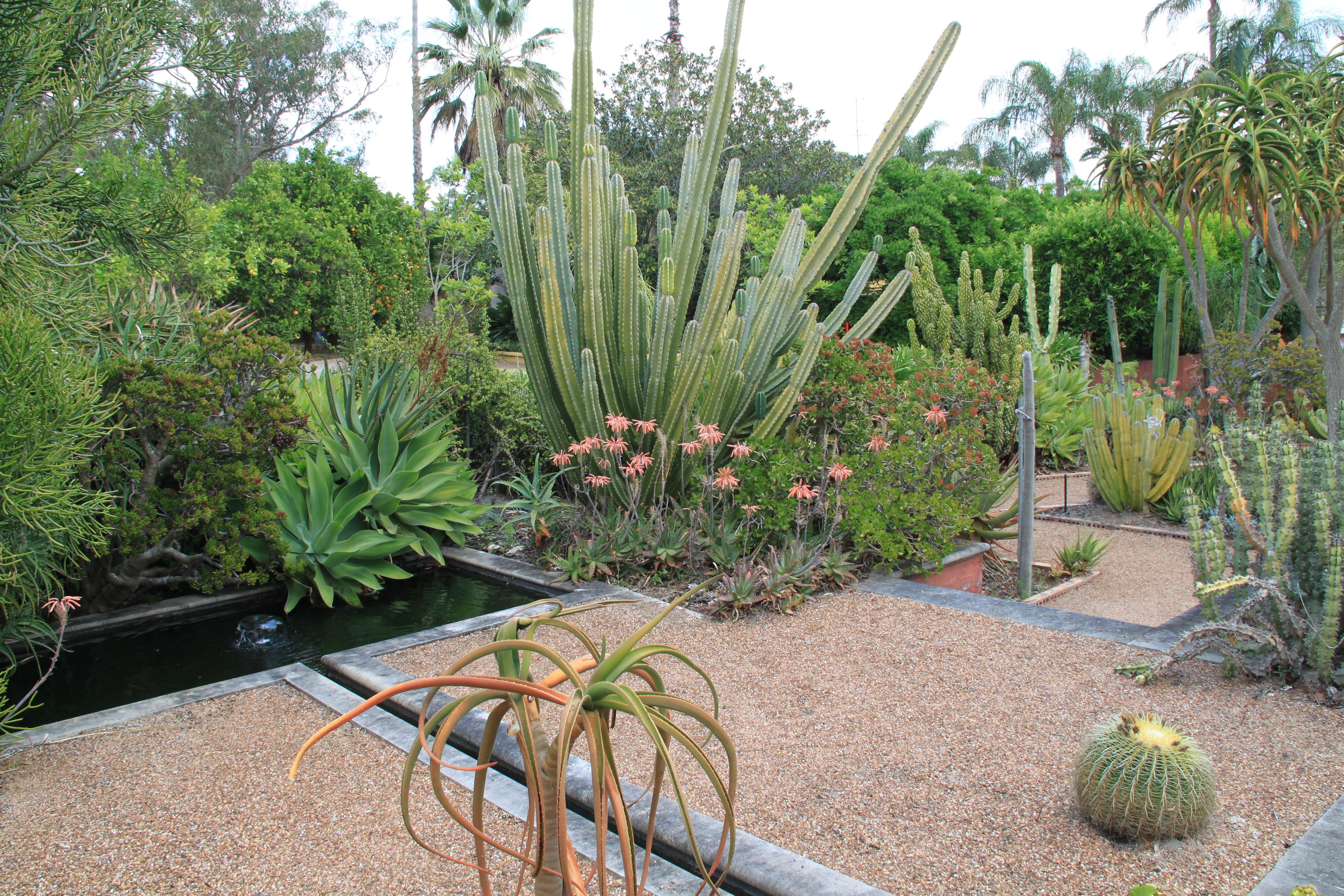 galston open gardens