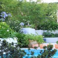 Azaleas bordering the spa