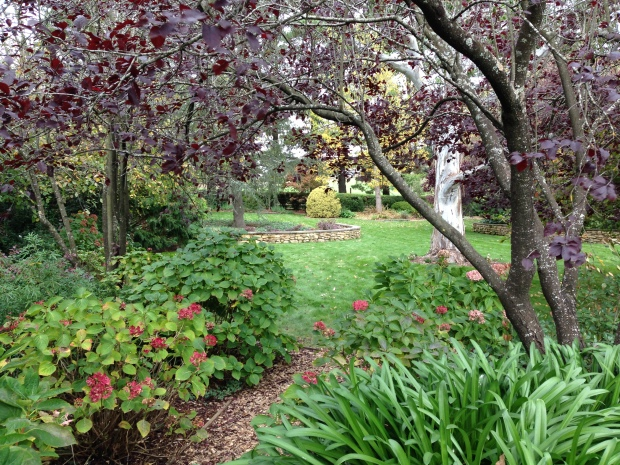 Woodland areas with thriving plantings and winding pathways