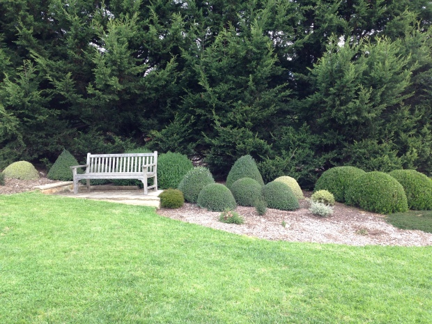 Simple topiary at Oldbury Farm