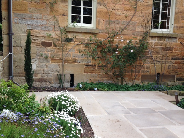 Climbing roses are the perfect choice to clad these old stone walls