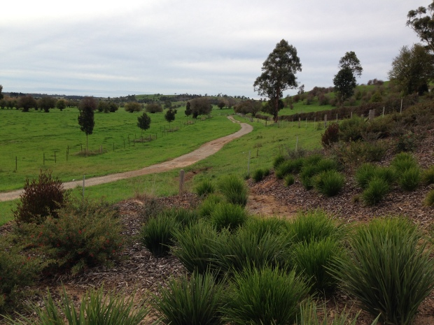 Native grasses and shrubs gently tie garden to the surroundings