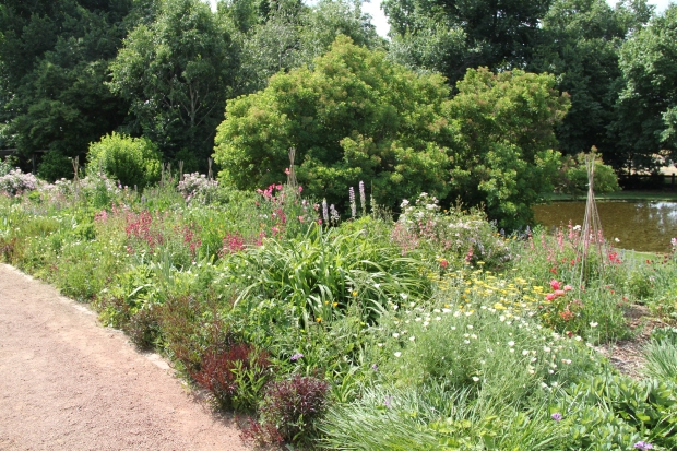 Bowylie - An English garden can be very tough in Australia if the right plants are chosen