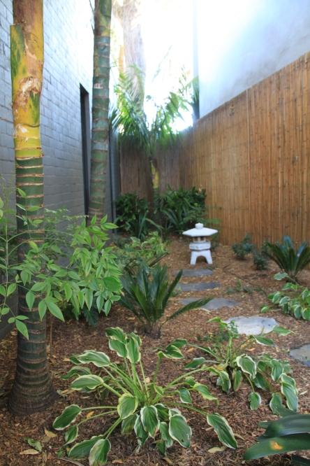 Tropical Japanese garden in Sydney