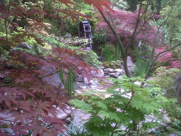 Chelsea Flower Show - Winner of the Artisan Garden; Ishihara Kazuyuki 'Tokyo - A Paradise on Earth'
