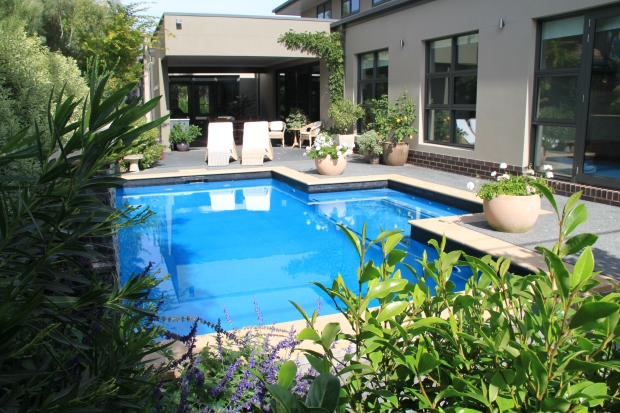 Poolside contemporary garden