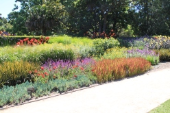 Bold, mass plantings at Melbourne Botanic Gardens