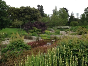 Bog garden at Woburn Abbey gardens