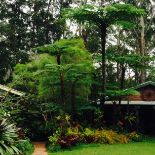 Stringybark Cottage, Qld