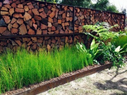 Lush grasses broken by interesting ferns