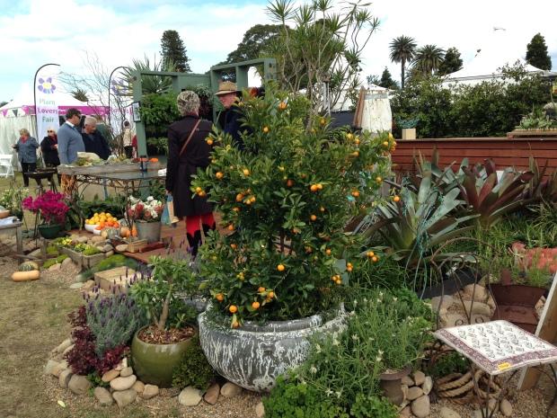 Andrew Davies 'My Garden Studio'