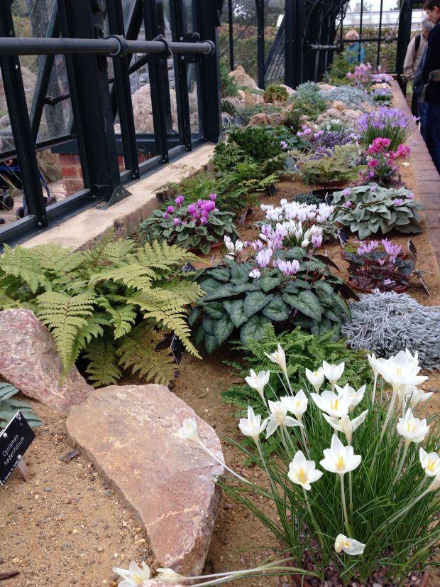 The Alpine Garden at Wisley