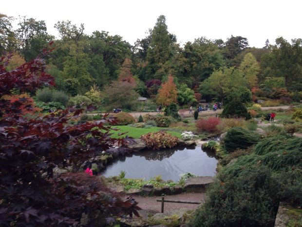 Autumn Colours at Wisley