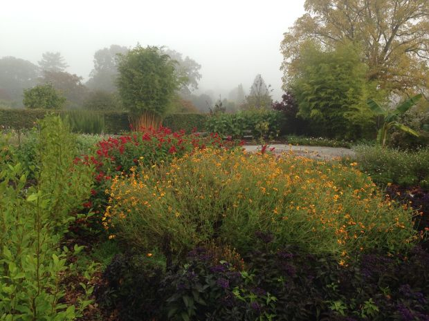 Colourful autumn borders at Wisley