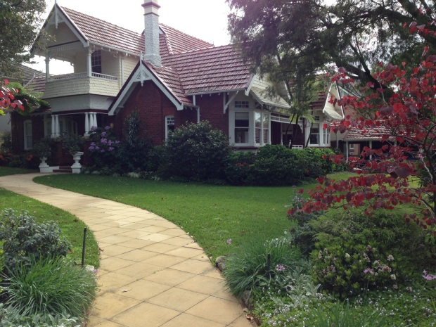 One of the beautiful gardens I see on my walks around my suburb