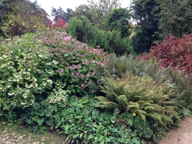 Large scale mixed borders at Hidcote