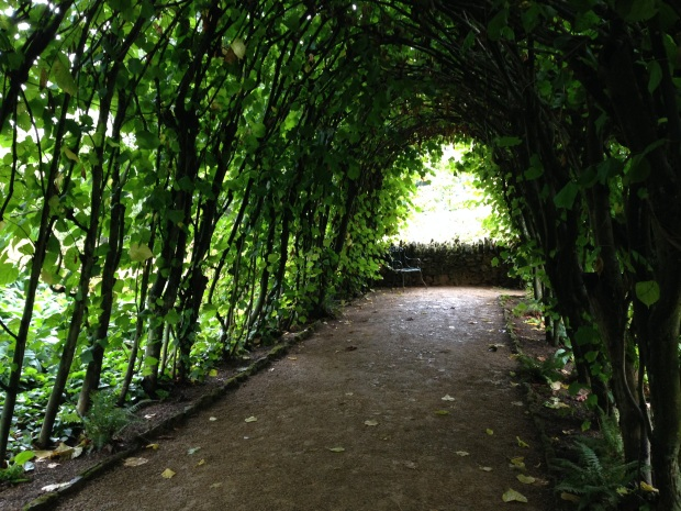 The Lime Walk at Hidcote