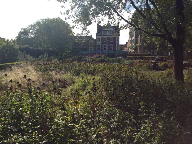 Serene Autumnal Piet Oudolf Plantings at Potters Field, London