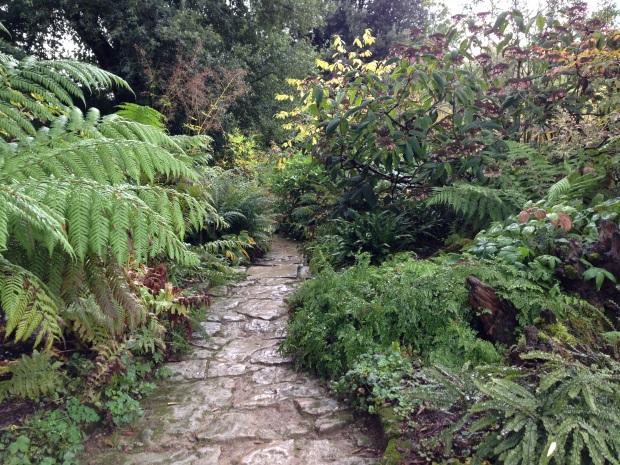 Shade loving natural planting at Hidcote