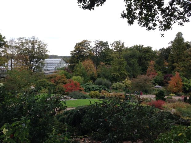 The main vista at Wisley - you can see the greenhouses in the background