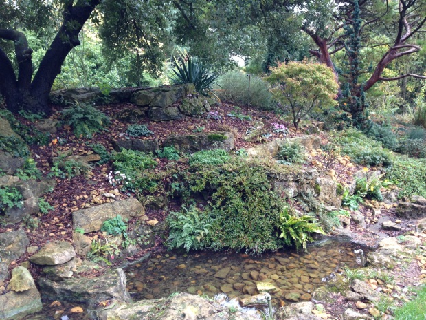 The Rock Bank at Hidcote with Cyclamen and poppies giving colour