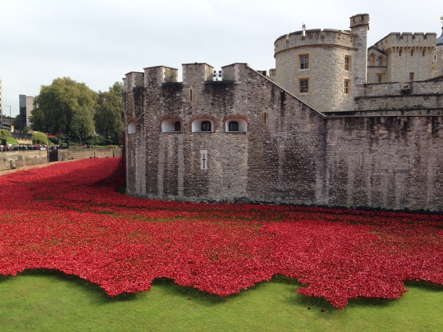 Tower of London Poppies 2014