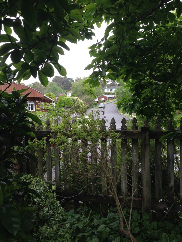 A glimpse from the garden to the suburban street at Te Kainga Marire