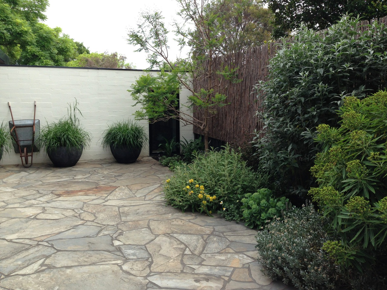 The best garden designer in australia janna schreier for Courtyard garden designs australia