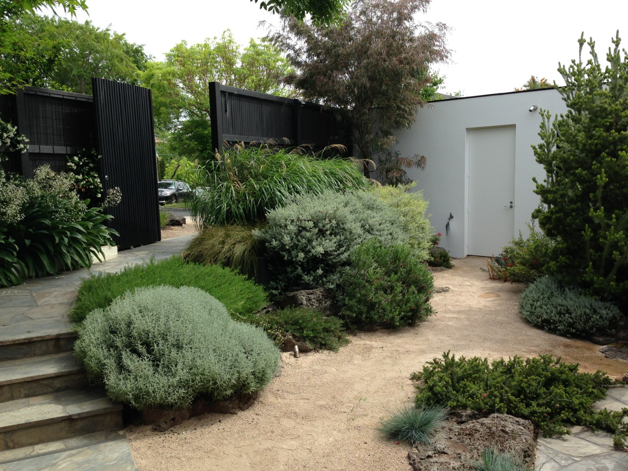 The best garden designer in australia janna schreier for Front garden designs australia