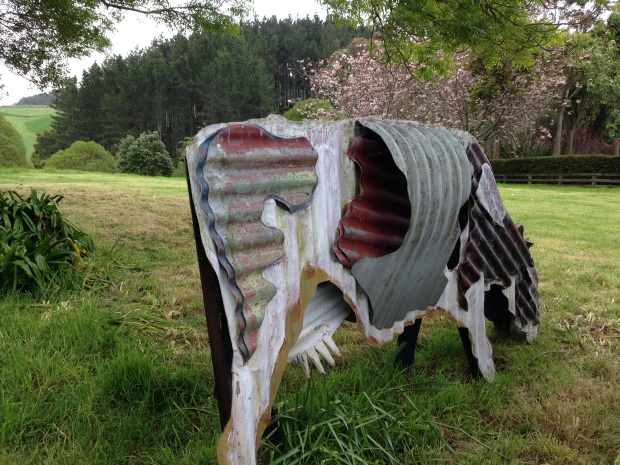 Jeff Thompson cow at Puketarata