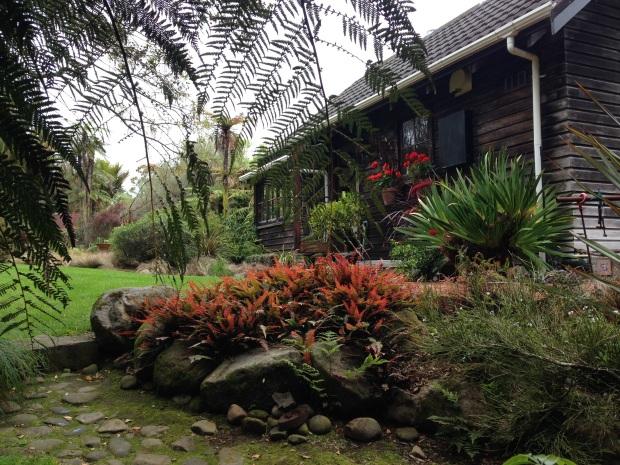 Lush colours at Te Kainga Marire