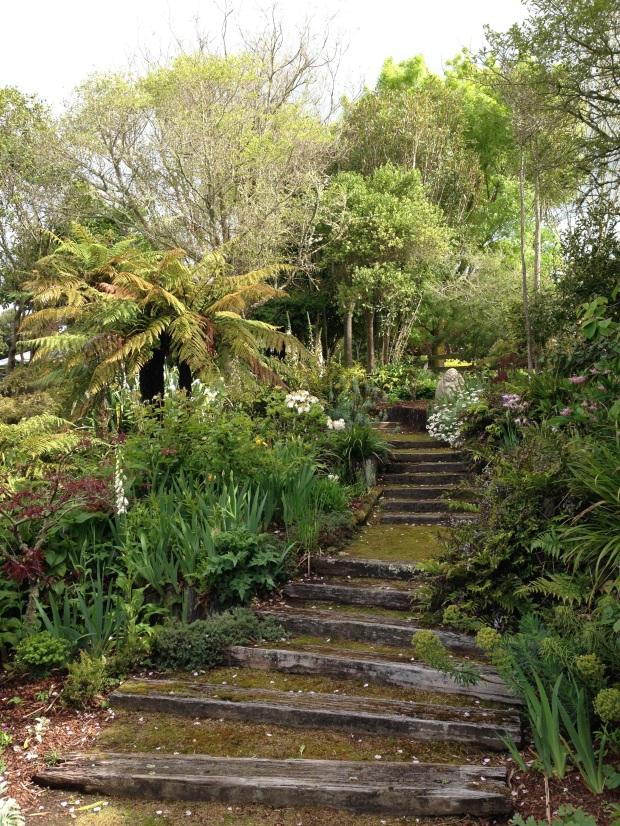 Mossy steps at Puketarata