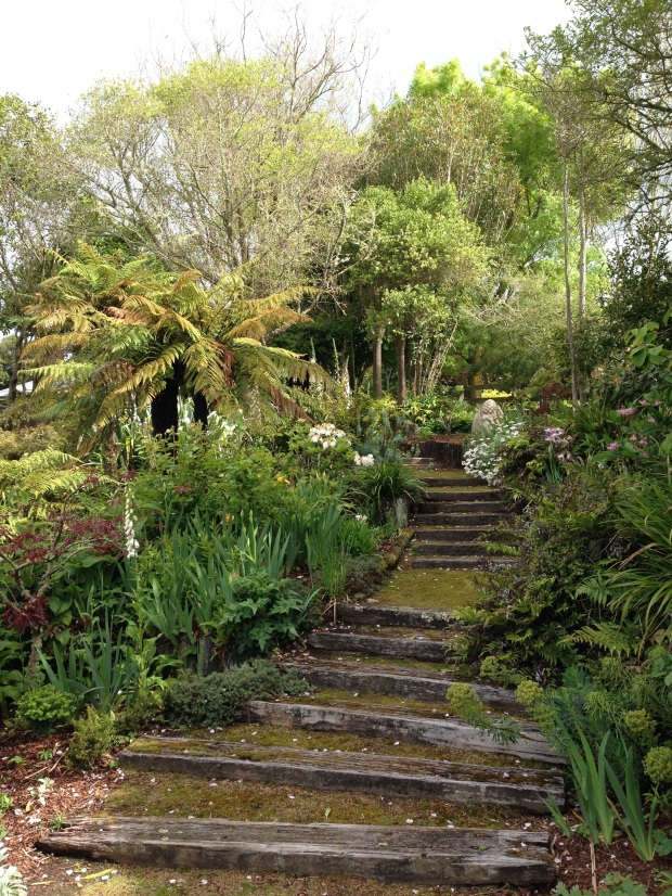 Mossy steps at Puketarata