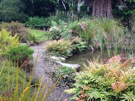 A world away at te kainga marire janna schreier garden for Fish ponds sydney