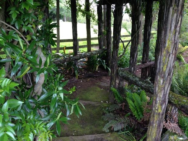 Shady walkway made from tree free trucks at Puketarata
