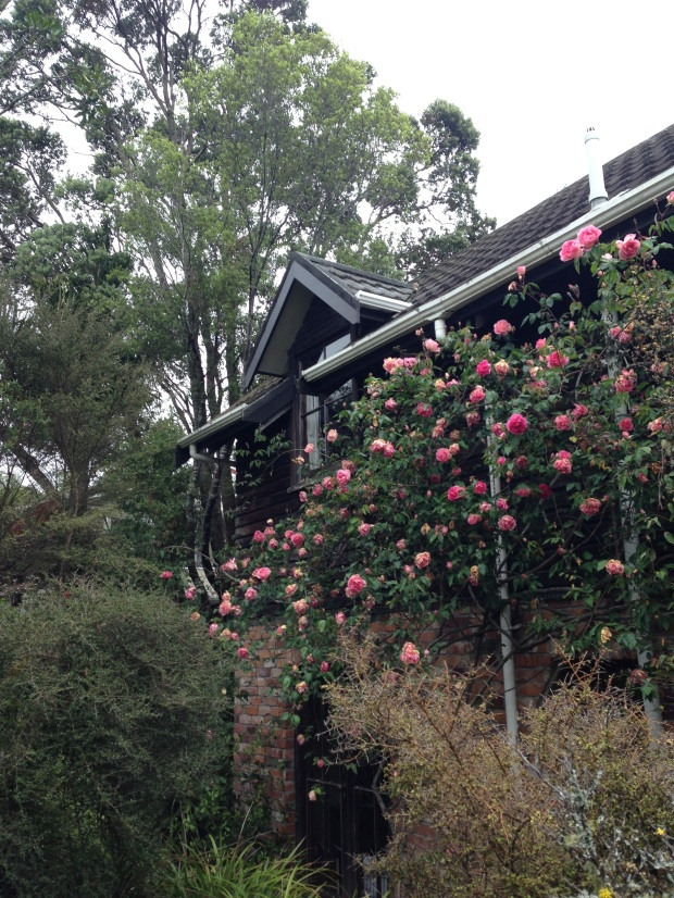 The house at Te Kainga Marire, New Plymouth