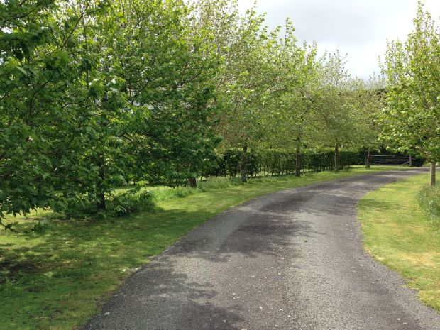 The meandering driveway up to Gravetye Garden