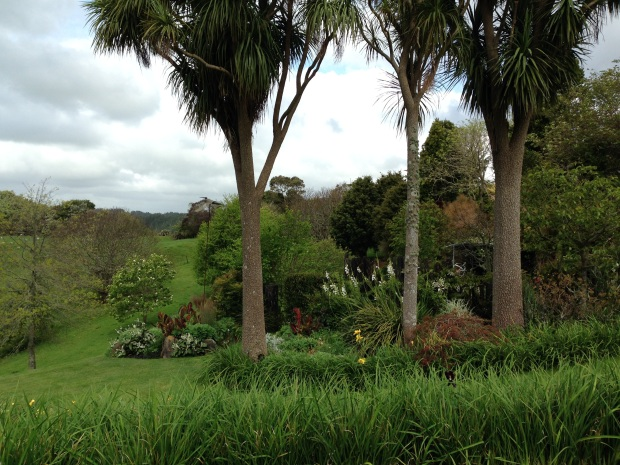 View beyond the cabbage trees at Puketarata