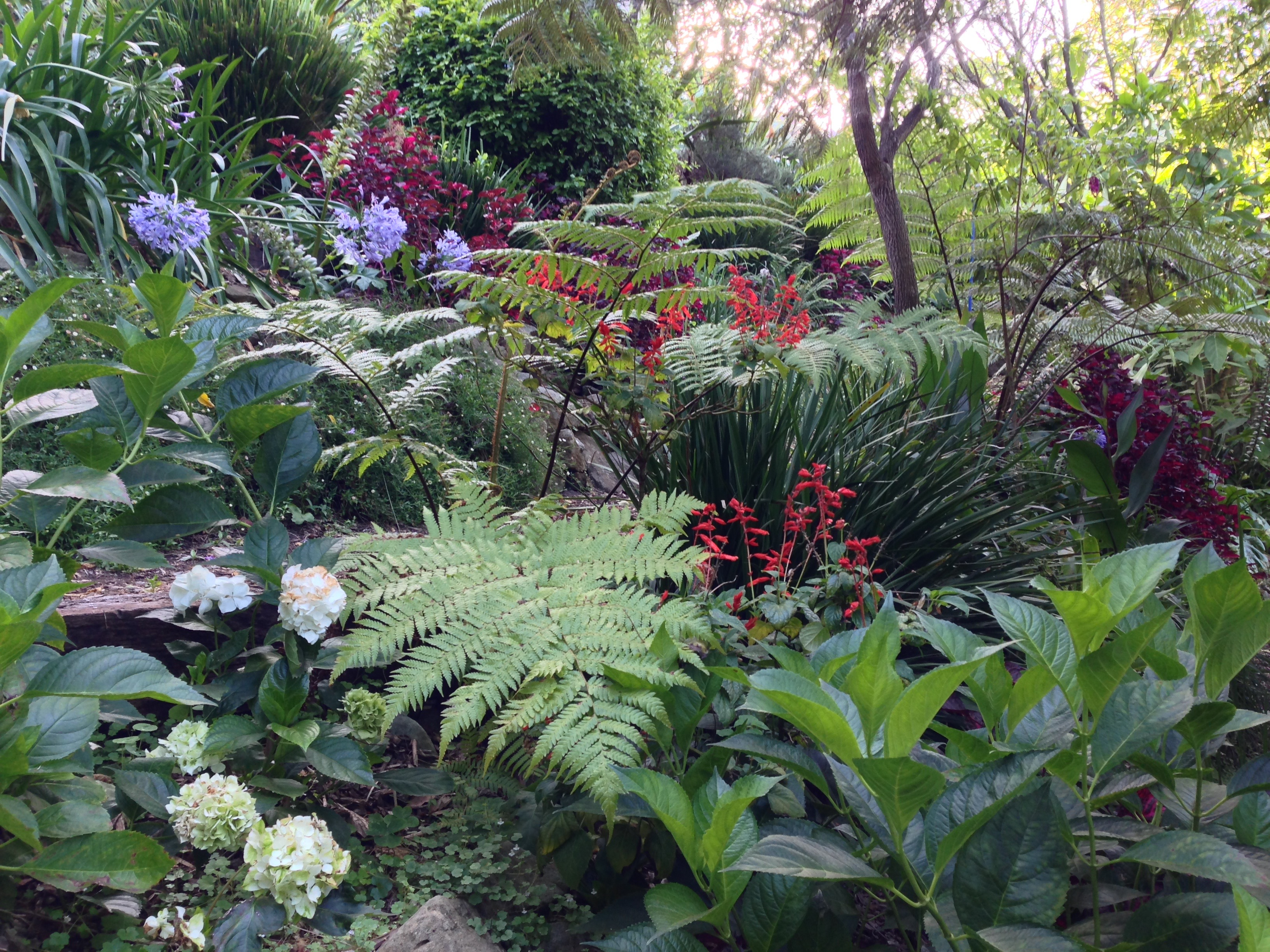 Secret Garden: Wendy's Secret (and Very Inspirational) Garden