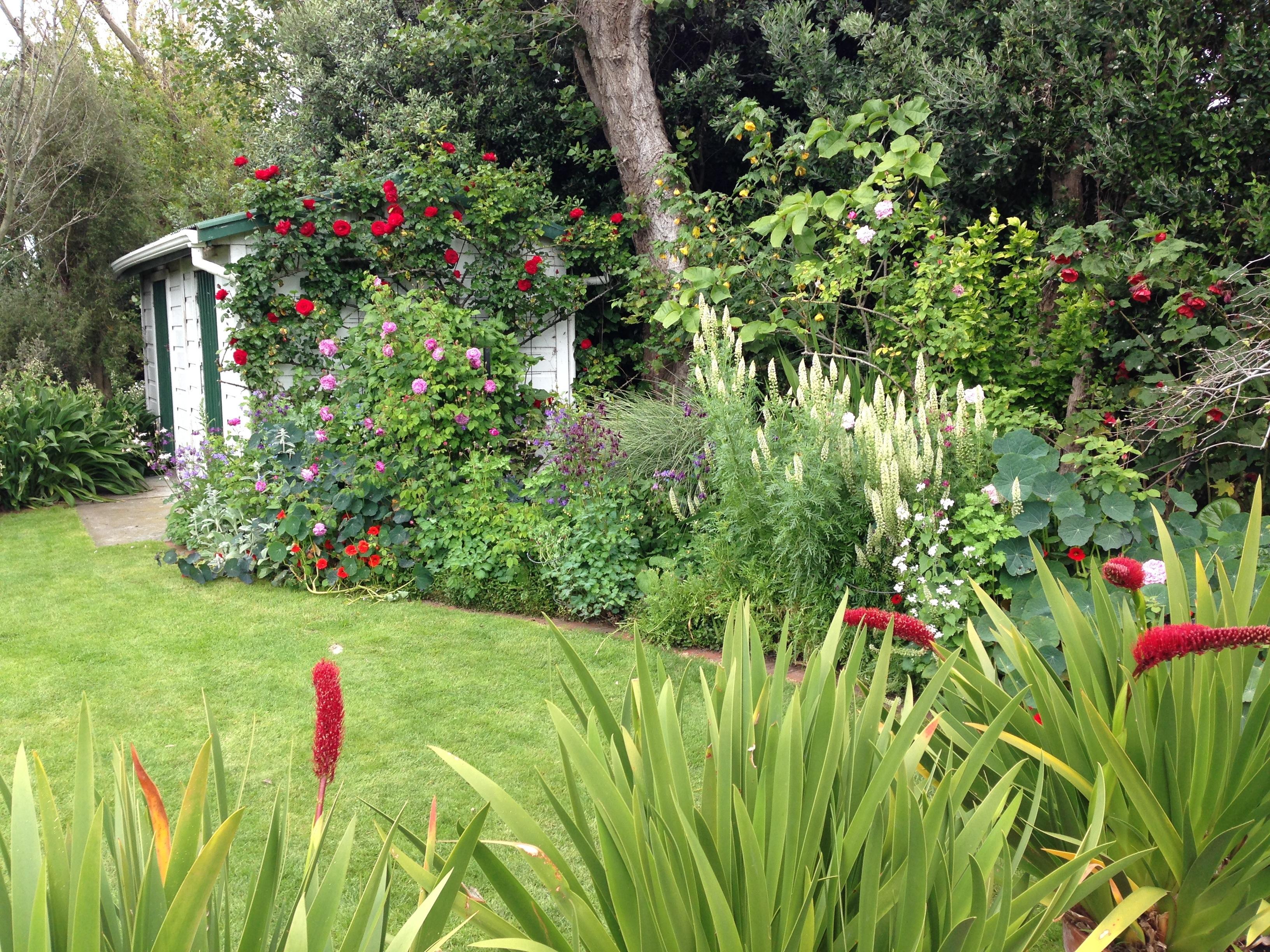 Melbourne garden show 2014 janna schreier garden design for New zealand garden designs ideas