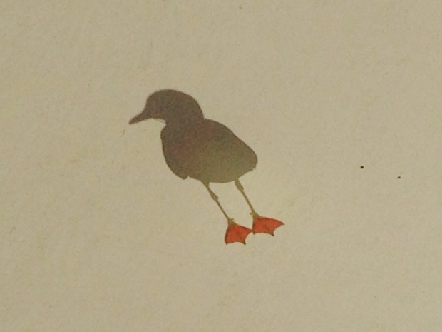Seagull at Church Point. Janna Schreier