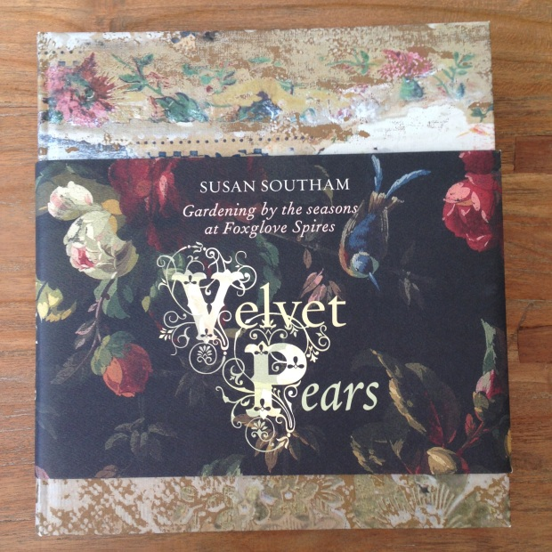 Velvet Pears by Susan Southam