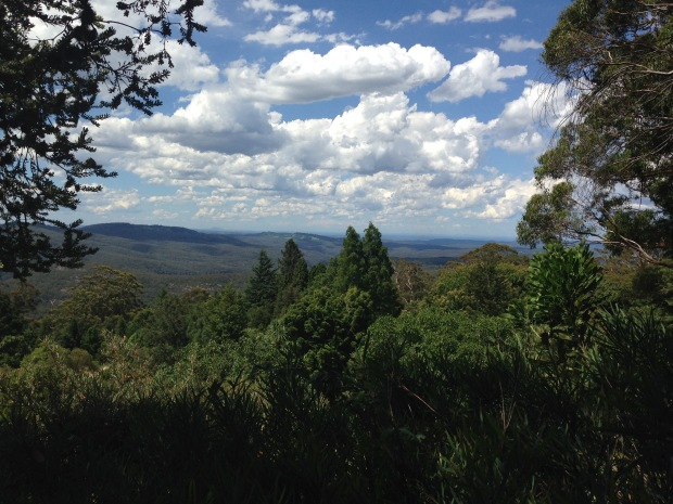 View out to the Blue Mountains from Mount Tomah Botanic Garden