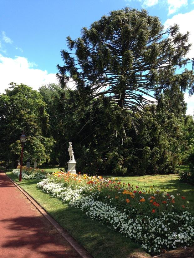 Bedding plants at Ballarat Botanic Gardens. Janna Schreier
