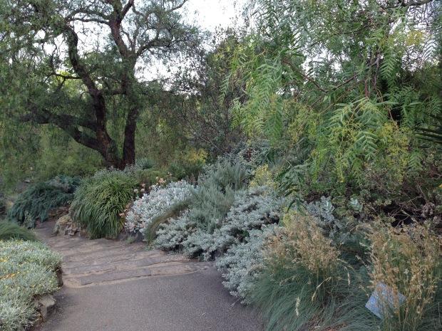 Grey Garden at Melbourne Botanic Garden. Janna Schreier
