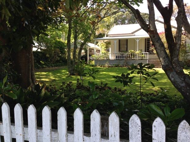 Homely garden in New Plymouth Janna Schreier