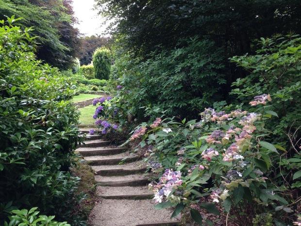 Looking up to the Azalea steps at Cloudehill. Janna Schreier